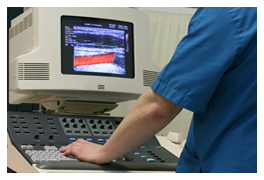 Ultrasound Pricing - Ultrasound Prices Reported by Buyers